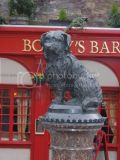 Greyfriars Bobby a local Edinburgh legend
